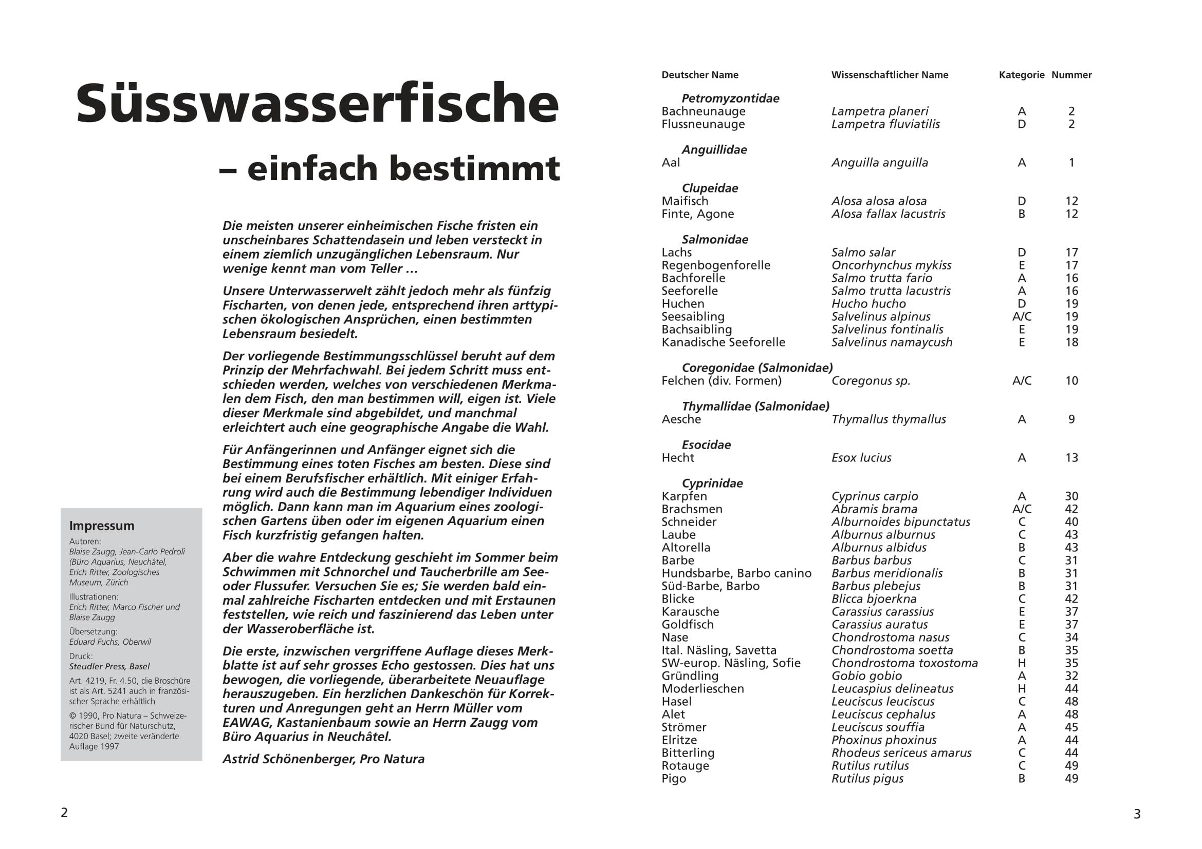 merkblatt_8_suesswasserfische-02