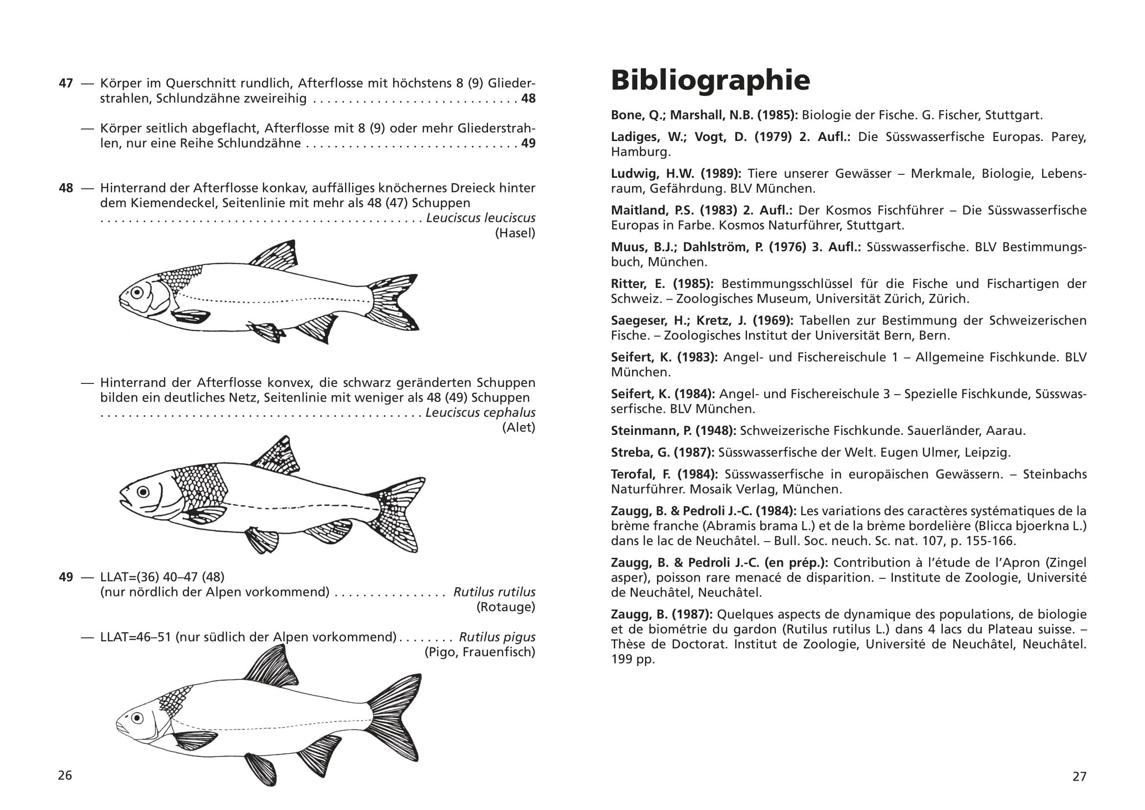 merkblatt_8_suesswasserfische-14